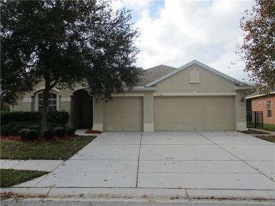 Hernando County, Hillsborough County, Pasco County, Pinellas County Single Family Home For Sale: 11110 Ragsdale Court