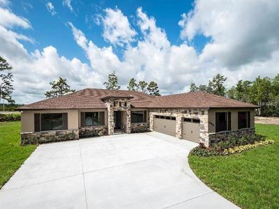 Orlando Single Family Home For Sale: 19109 Meredith Parkway