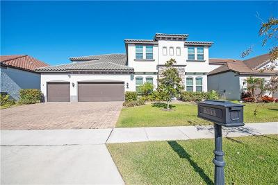Orlando Single Family Home For Sale: 8533 Morehouse Drive