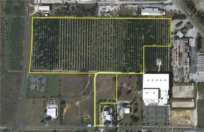 Tavares Residential Lots & Land For Sale: Lane Park Cutoff