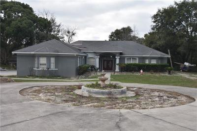 Mount Dora Single Family Home For Sale: 5550 Cemetery Road