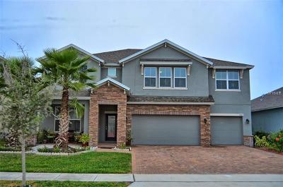 Orlando Single Family Home For Sale: 3925 Island Green Way