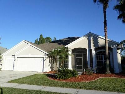 Wesley Chapel Single Family Home For Sale: 5234 Silver Charm Terrace