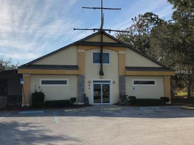 Commercial For Sale: 650 N Highway 27