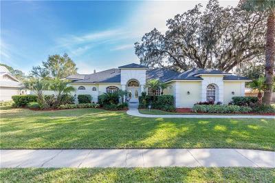Orlando Single Family Home For Sale: 8514 Amber Oak Drive