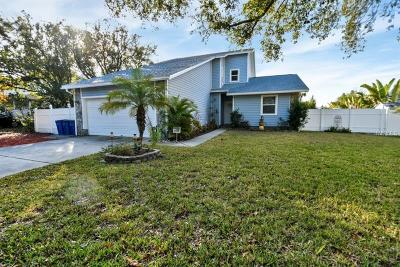 Palm Harbor Single Family Home For Sale: 428 Klosterman Road W