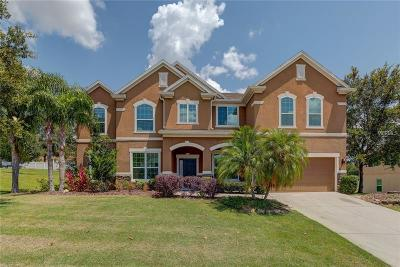 Apopka Single Family Home For Sale: 797 Daisy Hill Court