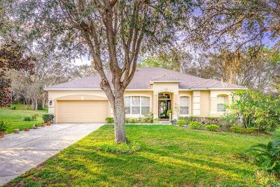 Apopka Single Family Home For Sale: 617 Mount Stirling Avenue