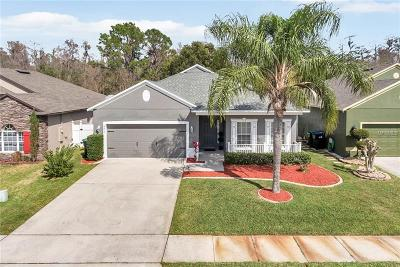 Orange County, Osceola County Single Family Home For Sale: 4513 Waterside Pointe Circle