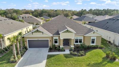Wesley Chapel Single Family Home For Sale: 26869 Fiddlewood Loop
