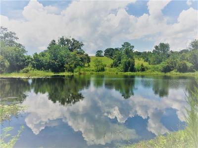 Apopka Residential Lots & Land For Sale: W Kelly Park Road