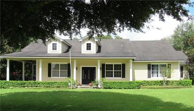 Groveland Single Family Home For Sale: 18400 Great Blue Heron Drive