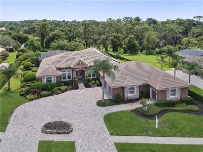 Debary Single Family Home For Sale: 268 Eagle Estates Drive