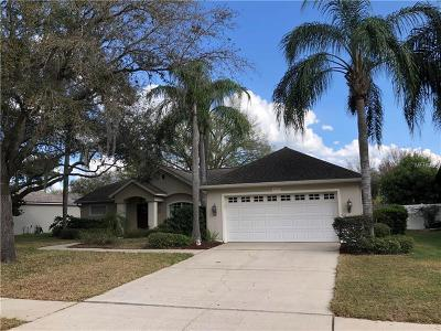 Valrico Single Family Home For Sale: 4019 Lithia Ridge Boulevard