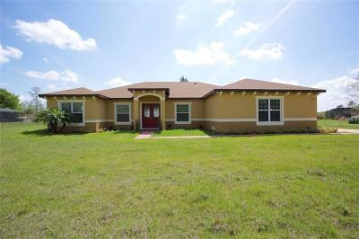Orlando Single Family Home For Sale: 19807 Lansdowne Street