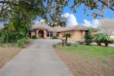 Orlando, Windermere, Winter Garden, Kissimmee, Reunion, Clermont, Davenport, Haines City, Champions Gate, Championsgate Single Family Home For Sale: 926 N Texas Avenue