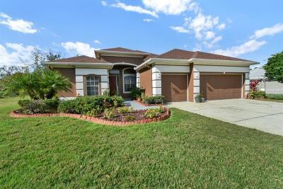 Land O Lakes Single Family Home For Sale: 3613 Pendleton Way