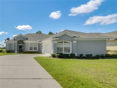 Daytona Beach Single Family Home For Sale: 232 Perfect Drive