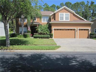 Saint Cloud Single Family Home For Sale: 5041 Coveview Drive