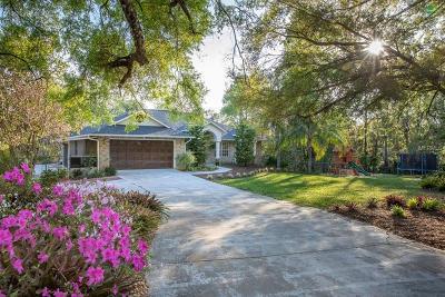 Deland Single Family Home For Sale: 2110 Lemon Street