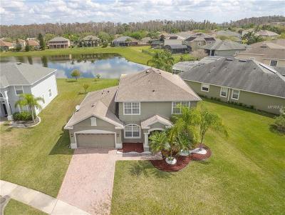 Celebration, Windermere, Winter Garden, Orlando Single Family Home For Sale: 5979 Winchester Isle Road