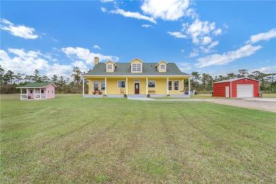 Orlando Single Family Home For Sale: 19309 Lake Pickett Road