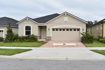 Volusia County Single Family Home For Sale: 248 Fenway Drive