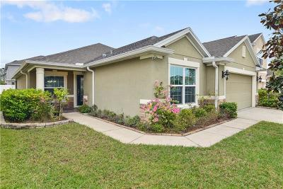 Orlando Single Family Home For Sale: 1111 Bassano Way