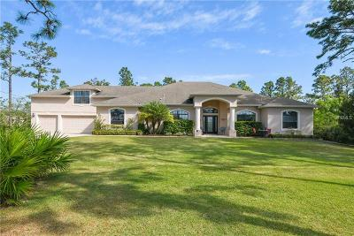 Orlando Single Family Home For Sale: 19407 Moorgate Street