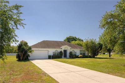 Mount Dora Single Family Home For Sale: 4507 Lake Jason Court