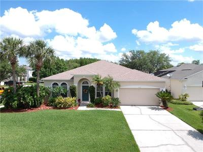 Orlando Single Family Home For Sale: 2319 Brixham Avenue