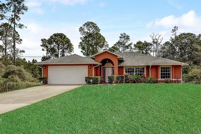 New Smyrna Beach Single Family Home For Sale: 823 S State Road 415