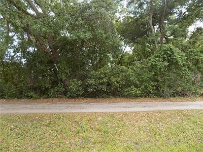 Mount Dora Residential Lots & Land For Sale: Holly Street