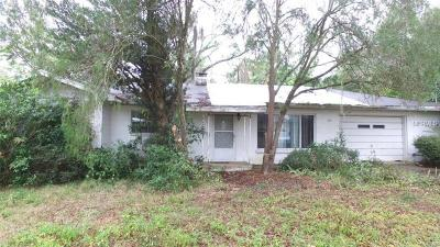 Deland Single Family Home For Sale: 350 S Woodward Avenue