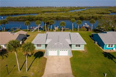 Port Orange Single Family Home For Sale: 1130 Harbour Point Drive
