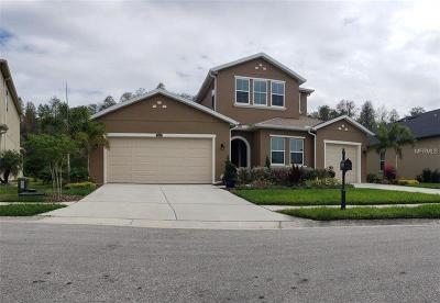 Pasco County Single Family Home For Sale: 1966 Marshberry Court