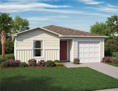 Single Family Home For Sale: 433 Church Avenue