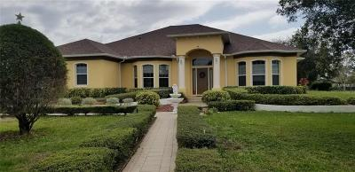 Kissimmee Single Family Home For Sale: 2600 Borinquen Drive
