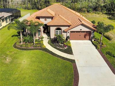 Lake County, Orange County, Osceola County, Seminole County Single Family Home For Sale: 347 Peninsula Island Point