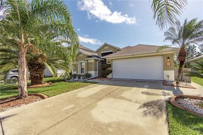 Kissimmee Single Family Home For Sale: 2908 Conner Lane