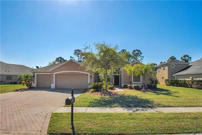 Palm Bay Single Family Home For Sale: 288 Brandy Creek Circle SE