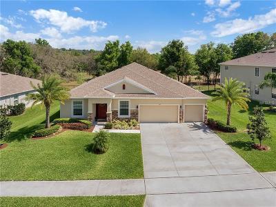 Rock Springs Ridge Single Family Home For Sale: 1071 Rock Creek Street