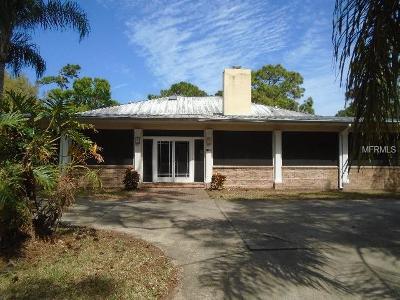 New Smyrna Beach Single Family Home For Sale: 2659 Pioneer Trail