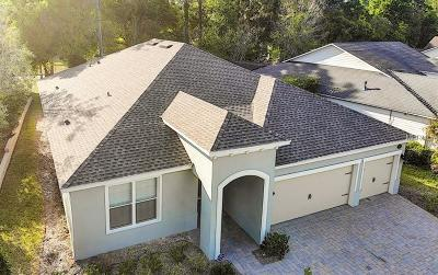Deland Single Family Home For Sale: 446 Victoria Hills Drive