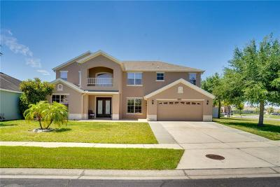 Kissimmee Single Family Home For Sale: 2832 Paige Drive