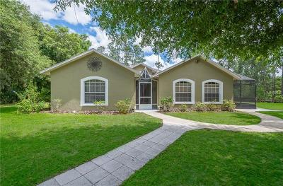 Osteen Single Family Home For Sale: 427 Pleasant Oaks Trail