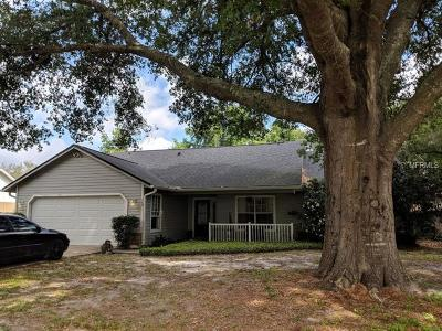 Debary Single Family Home For Sale: 94 Spur Road