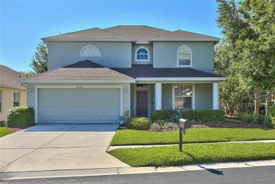 Wesley Chapel Single Family Home For Sale: 4305 Knollpoint Drive
