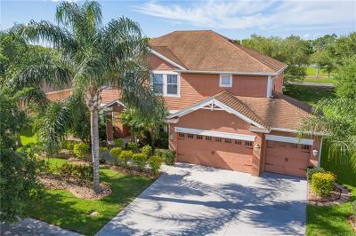 St Cloud, Saint Cloud Single Family Home For Sale: 3621 Pawleys Loop S