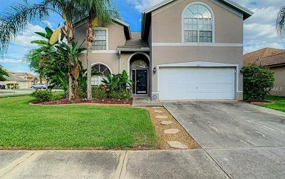 Tampa Single Family Home For Sale: 6609 Elliot Drive